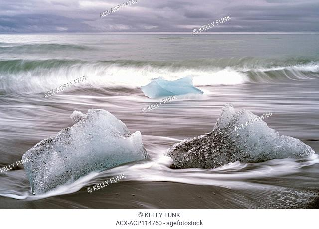 Pieces of Glacier from Jökulsárlón, a glacial lagoon, bordering Vatnajökull National Park in southeastern Iceland lay on the black sands of the Atlantic after...