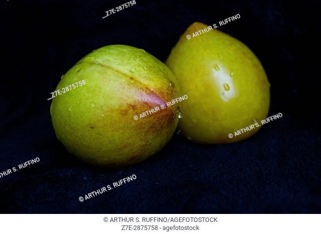 Lemon yellow plum, Chilean fruit (macro image)