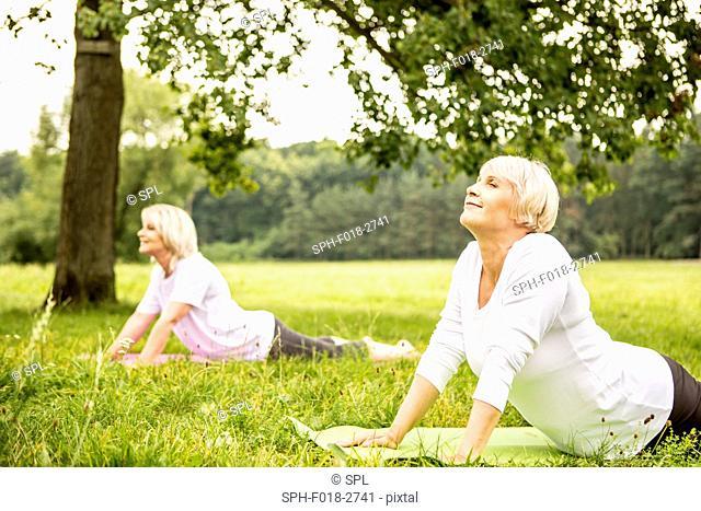 MODEL RELEASED. Two women doing yoga in field