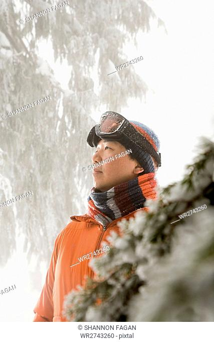 Skier by tree