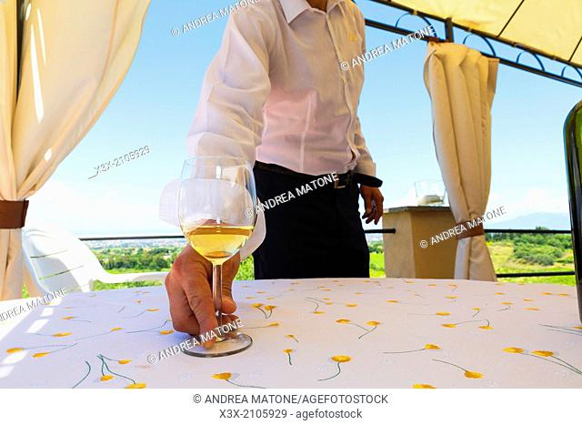 Men with a glass of white wine