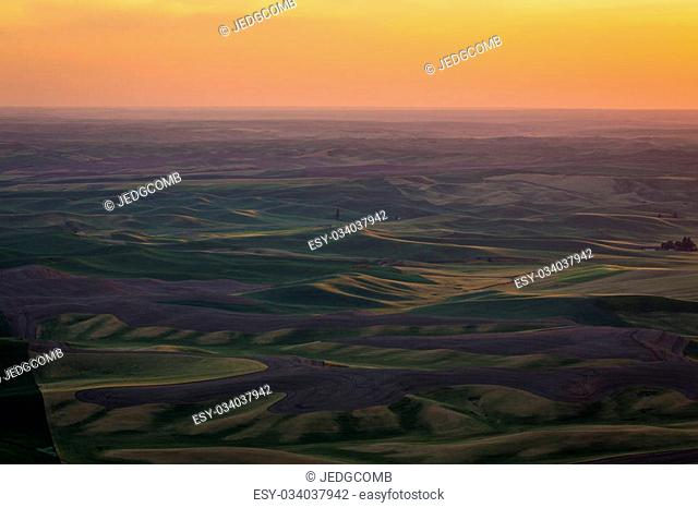 The rolling hills and fields of the Palouse region in Washington state