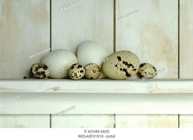 Easter eggs lying on shelf
