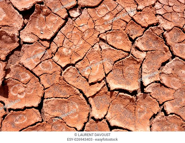 dry mud background texture. Global Warming