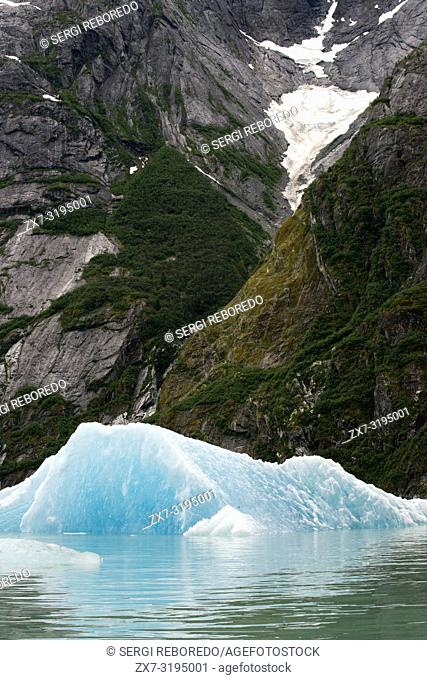 Icebergs in Fords Terror, Endicott Arm, Tongass National Forest, Alaska, USA. The 49th State, the largest in the U. S. , is perfect for cruisers