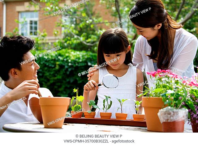 Oriental parents teaching child seeing plants by magnifying glass
