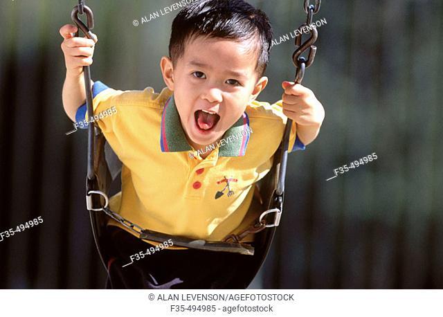 Happy Asian boy on a Swing