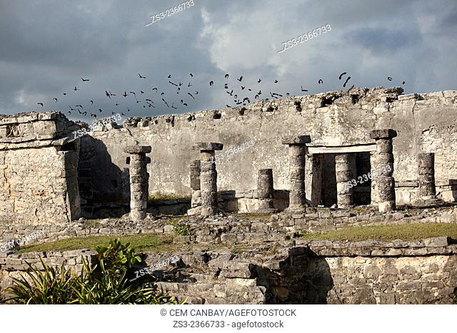 Stone Temple with birds at Tulum Ruins, Quintana Roo, Yucatan Province, Mexico, Central America
