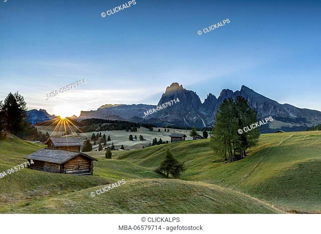 Alpe di Siusi/Seiser Alm, Dolomites, South Tyrol, Italy, Sunrise on the pastures of Alpe di Siusi/Seiser Alm, In the Background the peaks Sella