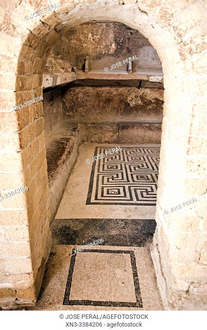 Mosaic floor baths, Ruins of Herculaneum, which was an ancient Roman town destroyed by volcan Mount Vesuvius, Ercolano, comune of Ercolano, Campania, Italy