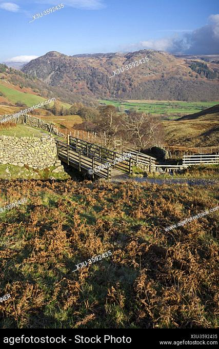 Footbridge over Scaleclose Gill above the Borrowdale Valley with Grange Fell beyond in the Lake District National Park, Cumbria, England