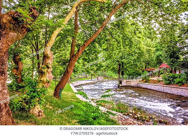 Under the trees in park, close to river. The photo is taken in beautiful park in Sandanski town, situated in Bulgaria, Europe