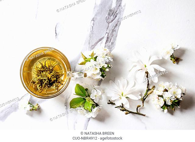 Glass cup of hot green tea with spring flowers white magnolia and cherry blooming branches over white marble texture background. Top view, copy space