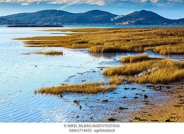 Santoña, Victoria and Joyel Marshes Natural Park. Colindres, Cantabria, Spain