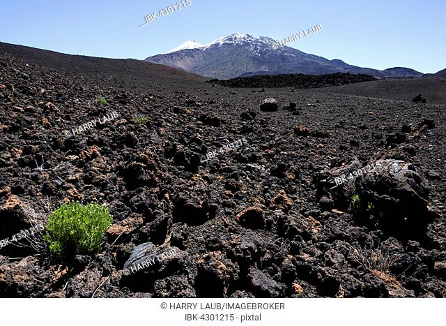 Volcanic landscape, behind the snowy Pico del Teide and Pico Viejo, Teide National Park, UNESCO World Heritage Site, Tenerife, Canary Islands, Spain