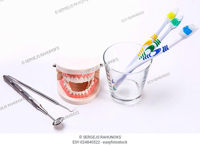 White teeth on the table