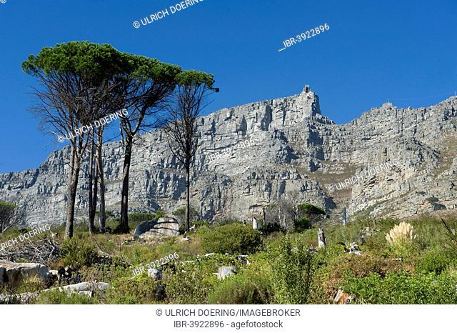Table Mountain and Upper Cable Station, Cape Town, Western Cape, South Africa