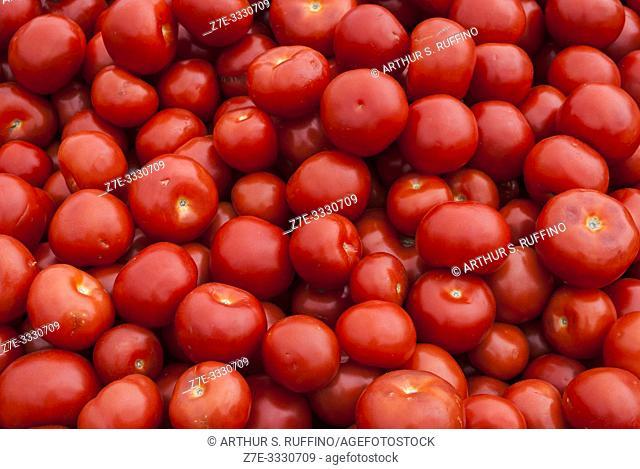 Tomato produce stand. Market Square. Helsinki, Finland, Europe