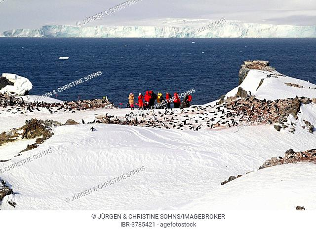 Tourists watching a penguin colony, Devil Island, Weddell Sea, Antarctica