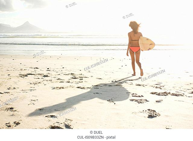 Young female surfer on sunlit beach, Cape Town, Western Cape, South Africa