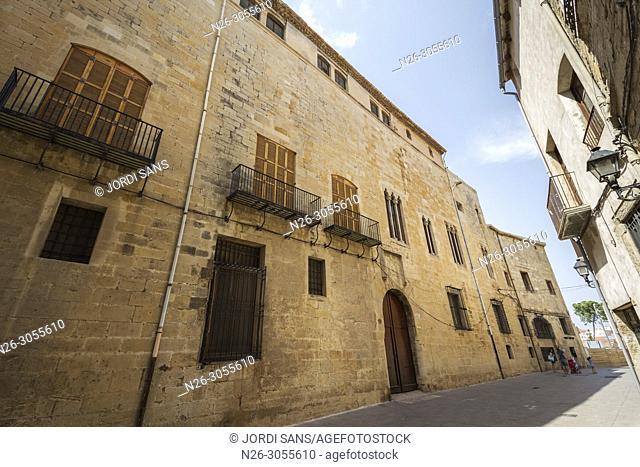 Palau Episcopal, Tortosa. XIII-XIV centuries. Tarragona province, Catalonia, Spain