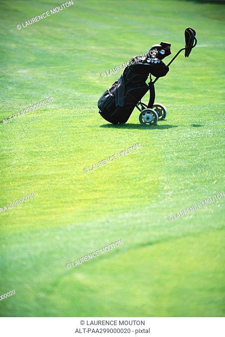 Golf bag on green