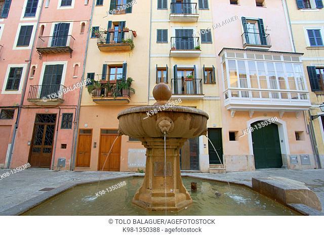 Antique Market St. Jeroni, The Call, Jewry, Historic Centre Palma Mallorca Balearic Islands Spain