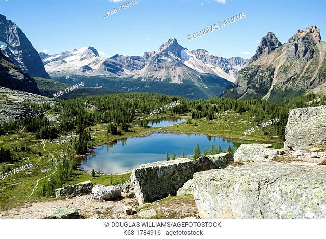 lakes above Lake O'Hara in Yoho National Park, British Columbia, Canada