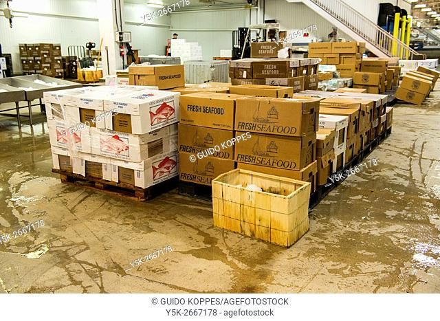 New York City, USA. Wholesale stall with boxes of seafood at the New Fulton Fish Market at Hunts Point, The Bronx