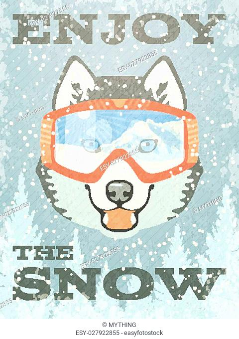 Winter Poster with Husky with goggles. Vector illustration