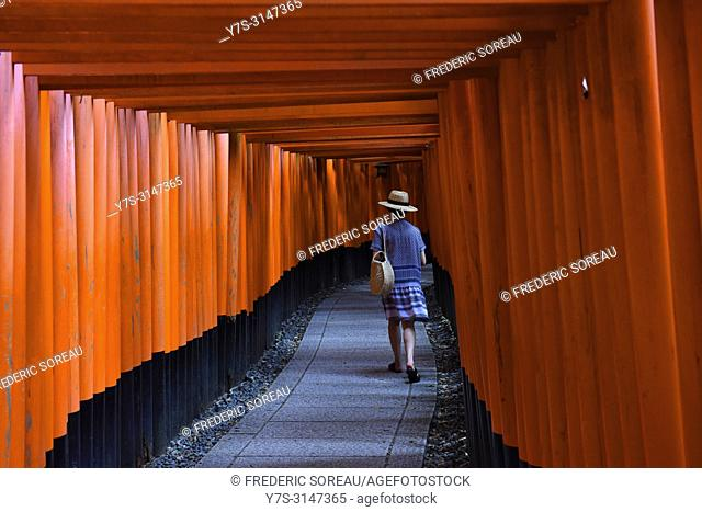 Torii gates in Fushimi-Inari Taisha Shrine, Japan, Asia