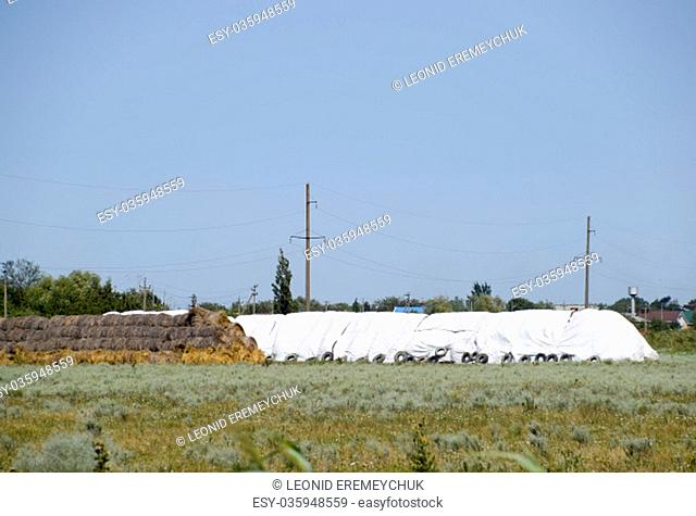 Skird of bales of hay. Storage of hay in the open air