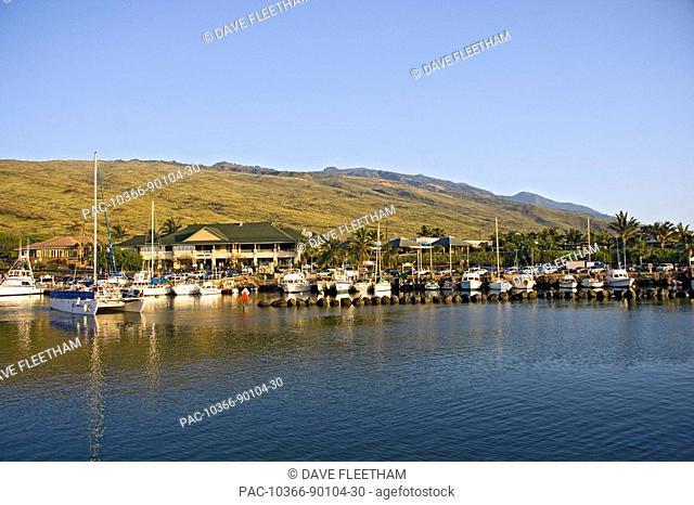 Hawaii, Maui, Early morning and vessels in Maalaea Boat Harbor