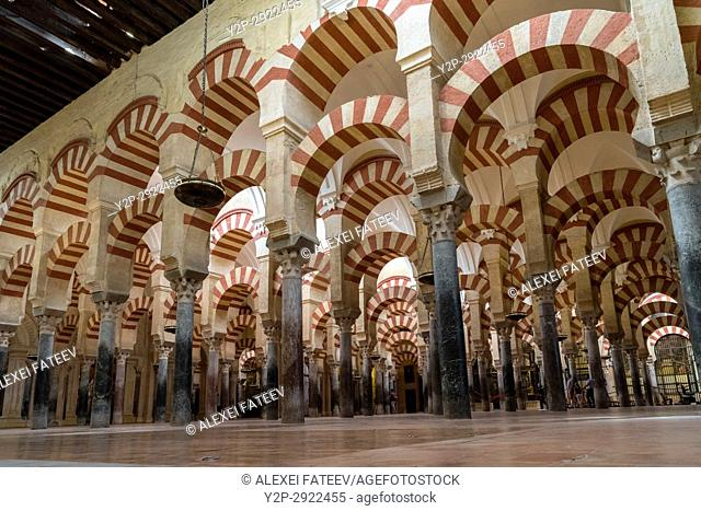 Prayer hall of Great Mosque of Córdoba, Spain