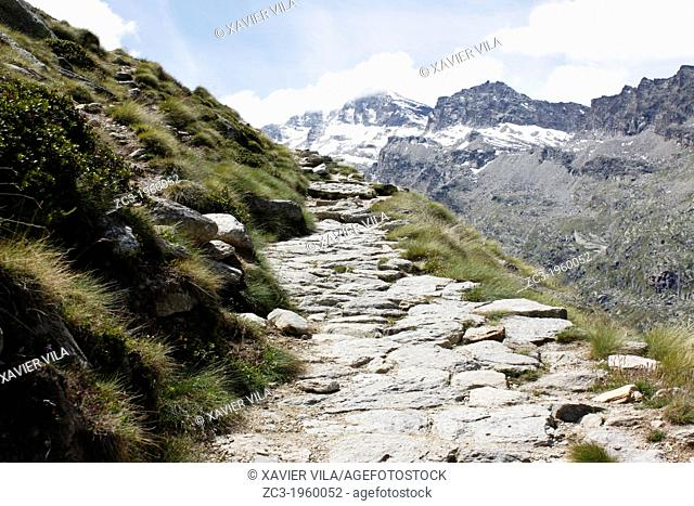 Path from Valsavarenche to the Refuge Vittorio Emanuele II, 2735m, National Park, Natural Park, Gran Paradiso, Val d'Aosta, Italy