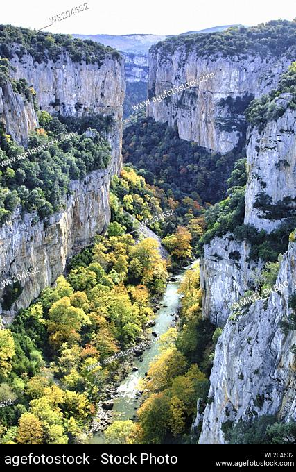 Gorge and river with decidual forest in autumn. Arbayun gorge. Navarre, Spain, Europe