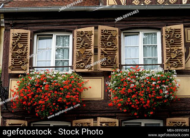 France, Alsace, Alsace Wine Route, Colmar, old town, residential building, two windows, flowers, detail