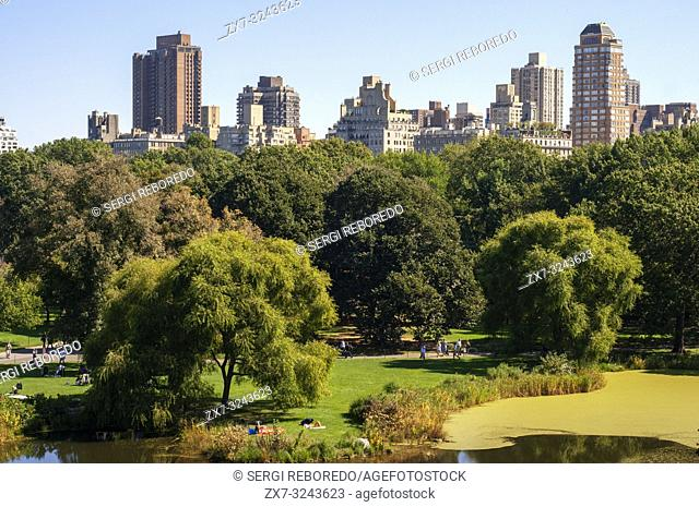 Central Park. In the vicinity of 65th Street is a grassy area called Sheep Meadow in which hundreds of people lie down in the summer months in the sun and read...