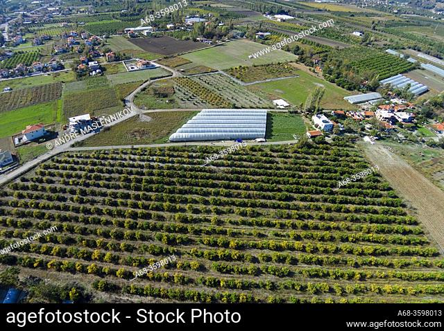 Beautiful landscape with plantations, country road and greenhouse. Turkey