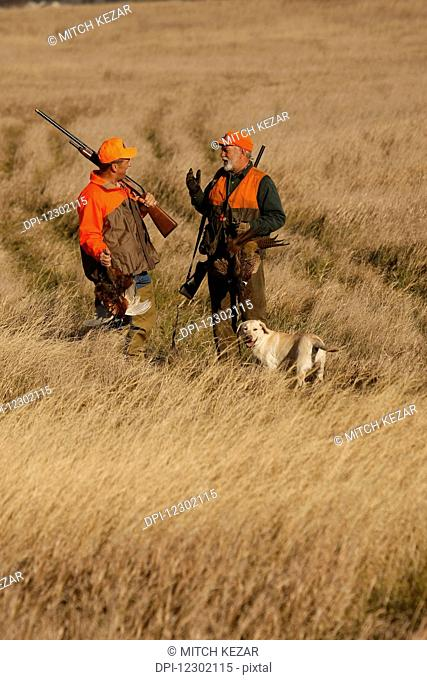 Two Pheasant Hunters With Yellow Lab In Field