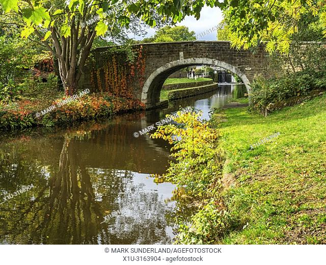 Dowley Gap Packhorse Bridge on the Leeds and Liverpool Canal between Saltaire and Bingley West Yorkshire England