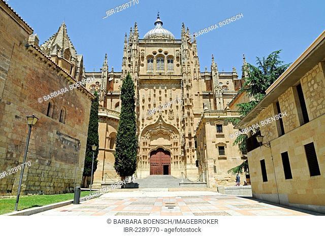 Old Cathedral, Salamanca, Castile-Leon, Spain, Europe, PublicGround