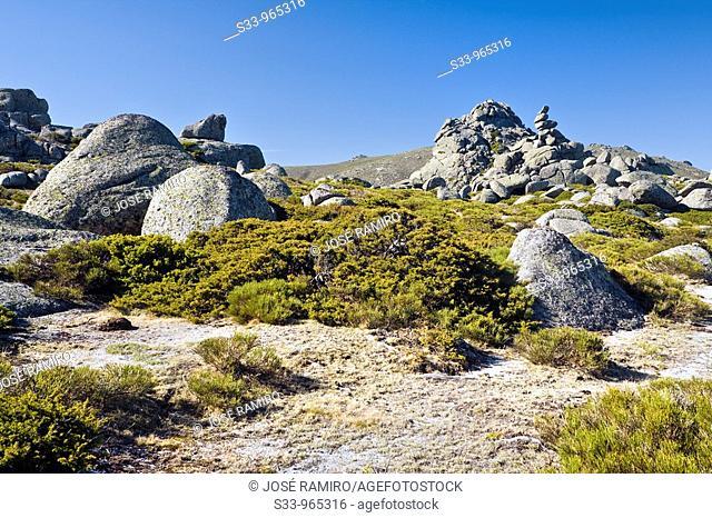 Sierra de la Paramera  Ávila  Castilla León  España