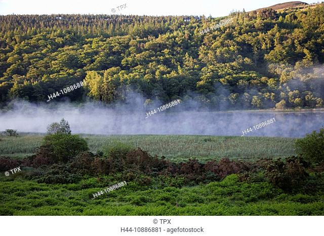 Republic of Ireland, County Wicklow, Wicklow Mountains National Park, Mist Rising over Glendalough Lower Lake