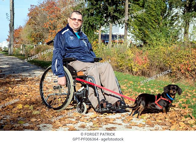 PHYSICALLY HANDICAPPED MAN IN HIS WHEELCHAIR WITH HIS DOG IN THE PARK IN AUTUMN, CHARTRES (28), FRANCE