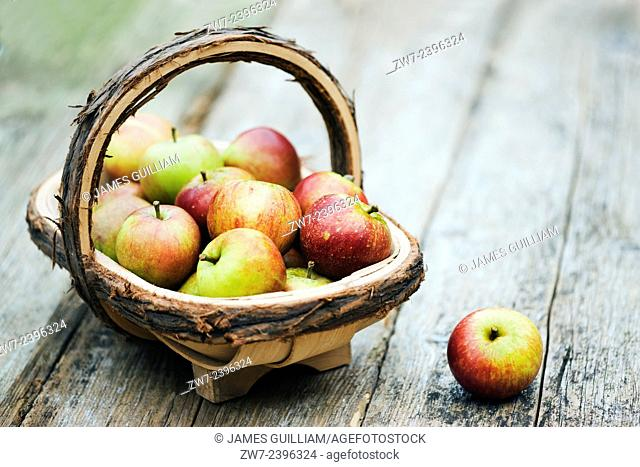 Apples and trug on rustic timber table