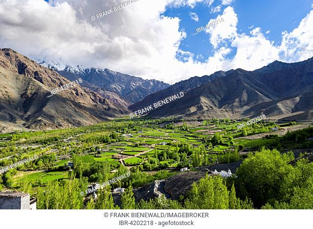 Aerial view of green fields and farm houses in a little valley high above the Indus Valley, Matho, Jammu and Kashmir, India