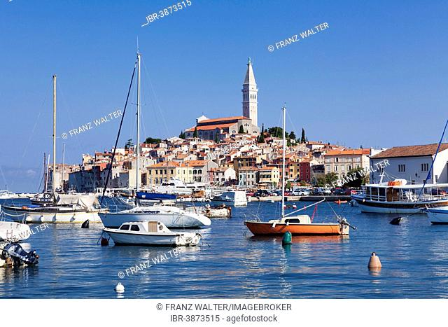 Harbour and historic town centre with the tower of the Parish Church of St. Euphemia, Rovinj, Istria, Croatia
