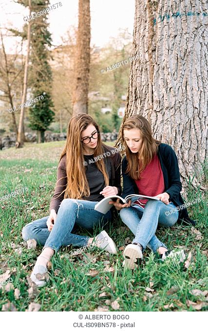 Girlfriends reading book in park