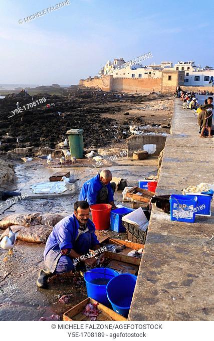 Morocco, Essaouira, Old Medina, Harbour